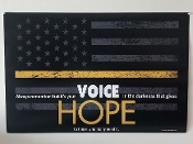 VOICE OF HOPE POSTER (FOLDED)